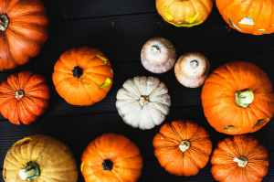 pumpkins and gourds on a table